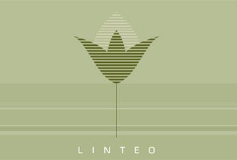 Ediciones Linteo