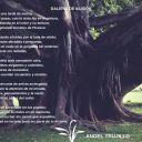 GALERÍA DE ILUSIÓN