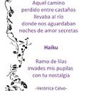 haiku y tanka.veronica calvo