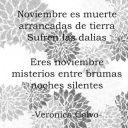 verónica calvo-haikus a noviembre